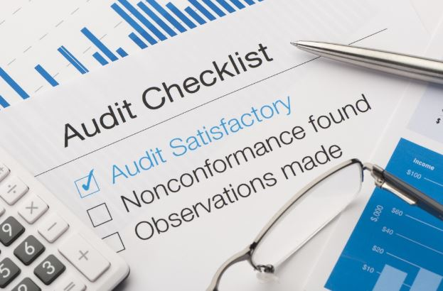 Surviving Your Very First Business Audit