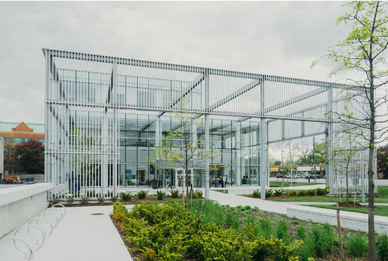 First Impressions Count: How Professional Landscaping Can Enhance Your Company's Image