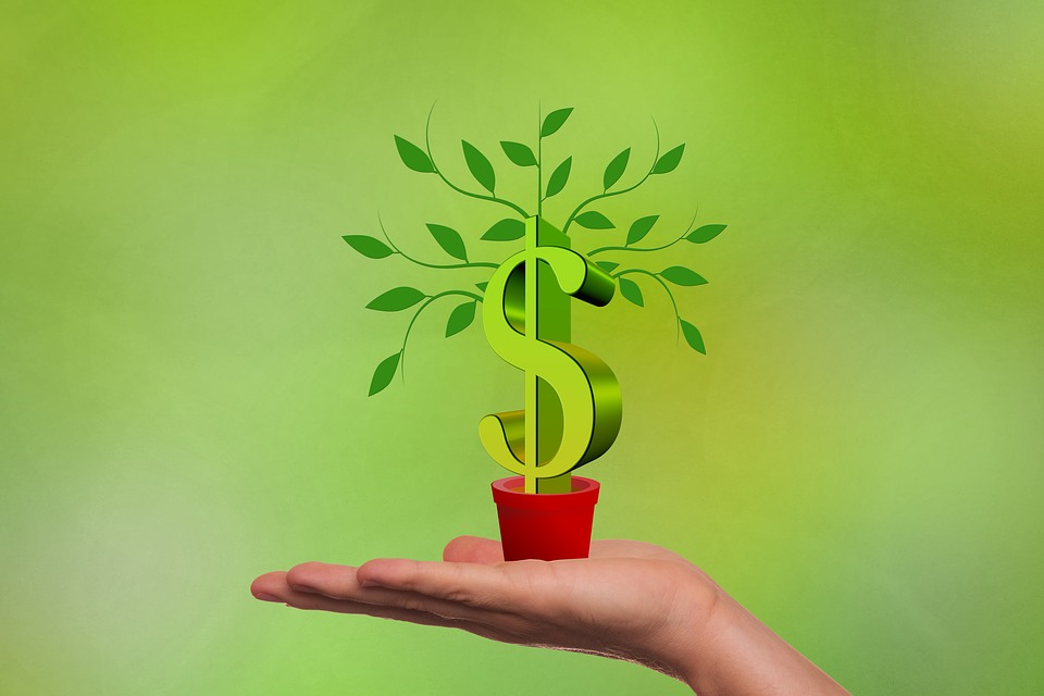 Why Going Green Makes Perfect Business Sense
